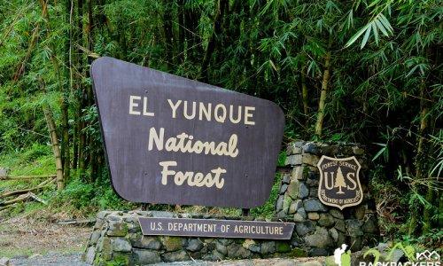 TOUR NATURALEZA - El Yunque Rainforest