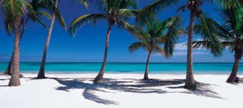 R. DOMINICANA - Boca Chica