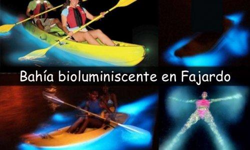 TOUR NATURALEZA - Bahía Bioluminiscente en Fajardo